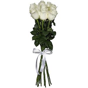 Букет из 9 белых роз - премиум